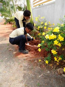 lakshya-international-plantation-3