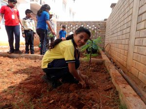 plantation-program lakshya