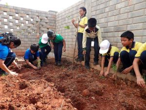 plantation-program2 lakshya